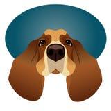 Basset Hound isolated on circle blue frame Stock Images