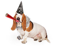 Basset Hound New Years Party Dog. A funny Basset Hound dog wearing a Happy New Year's hat and party necklace while blowing on a red noisemaker royalty free stock photo