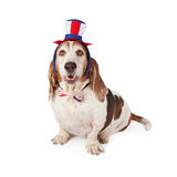 Basset Hound Wearing Patriotic Hat and Tie Royalty Free Stock Photo