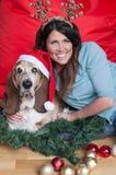 Basset Hound wears santa hat at Christmas Royalty Free Stock Image