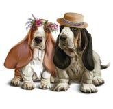 Bassethounds na spacer akwareli rysunku Zdjęcia Royalty Free