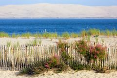 Bassin d`Arcachon landscape in France Stock Image