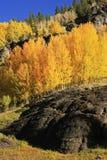 Bassin de garçon de yankee, région sauvage de Sneffels de bâti, le Colorado Images stock