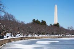 Bassin de marée en hiver Photo libre de droits