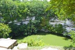 bassin de trou de cenote Photographie stock libre de droits