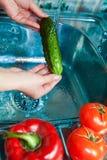 Bassin des légumes dans l'eau pure Images libres de droits