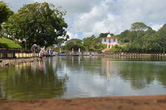 Bassin - Ganga Talao - Mauricio magníficos Foto de archivo libre de regalías