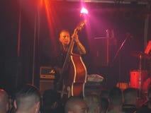 Bassista Immagini Stock