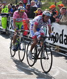 Basso at Tonale pass Stock Photo