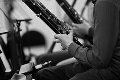 Bassoons in the orchestra closeup Stock Image