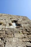 Bassorilievo decorativo sulla parete della fortezza medievale Immagine Stock