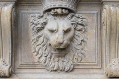 Bassorilievo della statua del leone di pitti di palazzo di Florenze immagine stock