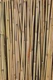Bastão de bambu Foto de Stock Royalty Free
