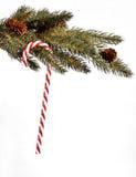 Bastão de doces do feriado do Natal fotografia de stock royalty free