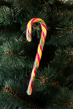 Bastão de doces do Natal Imagem de Stock