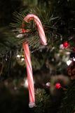 Bastón de caramelo en la decoración del árbol de navidad fotos de archivo libres de regalías
