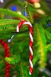 Bastón de caramelo tradicional en el árbol de navidad Imagenes de archivo