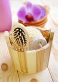 Bast and massage brush Stock Images