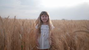 Bastante lindo rural una niña en el vestido blanco cansado de jugar en un campo de trigo maduro entre los oídos del grano almacen de metraje de vídeo