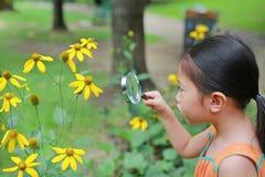 Bastante poca muchacha asiática del niño con miradas de la lupa en la flor en parque del verano imagenes de archivo