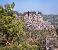 The Bastei rocks 1 Stock Images