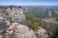 The Bastei rocks 3 Royalty Free Stock Images