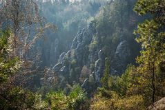 The Bastei rocks 6 Royalty Free Stock Photo