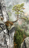 Bastei at Saxon Switzerland, Germany royalty free stock photos
