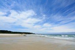 Bastendorff plaża, grucha okręgu administracyjnego park, Oregon Zdjęcie Stock