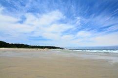 Bastendorff plaża, grucha okręgu administracyjnego park, Oregon Obraz Stock