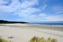 Bastendorff plaża, grucha okręgu administracyjnego park, Oregon Obrazy Stock