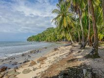Lonely beach. Bastimentos Island, Bocas del Toro, Panama - March 18, 2017: Lonely beach with some rocks on the shore and palm trees under a cloudy sky Royalty Free Stock Images