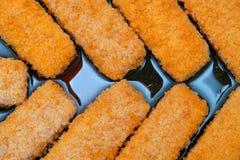 Bastoncini di pesci Immagine Stock Libera da Diritti