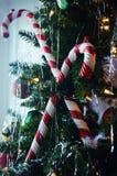 Bastoncini di zucchero sull'albero di Natale Fotografia Stock Libera da Diritti