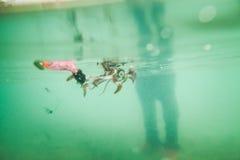 Bastone del calamaro il gancio dei pescatori Fotografie Stock