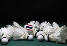 Bastone della bandiera di Mini Thailand sul mucchio dei volani usati sul pavimento verde del campo da badminton immagine stock