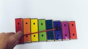 Bastone della mano dello xilofono dell'arcobaleno immagine stock libera da diritti