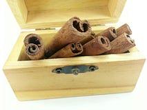 Bastone di cannella in scatola di legno Immagine Stock