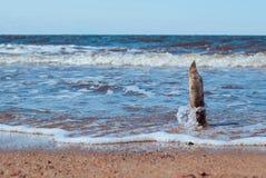 Bastone di legno che sta contro la spiaggia del mare del wavesnorth Fotografia Stock