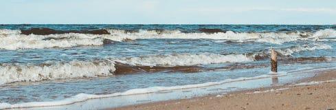Bastone di legno che sta contro la spiaggia del mare del wavesnorth Immagine Stock