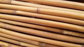 Bastones de bambú secados Foto de archivo libre de regalías