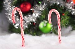 Bastones de la Navidad Fotos de archivo