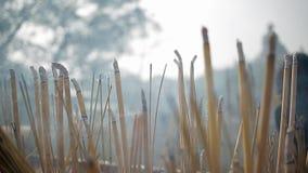 Bastoni dell'aroma in tempio buddista archivi video