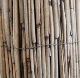 Bastoni di bambù asciutti, recinto fotografie stock libere da diritti