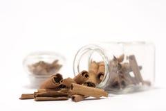 Bastoni di cannella in bottiglia Fotografia Stock Libera da Diritti
