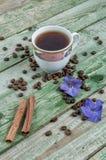 Bastoni di cannella, chicchi di caffè, fiore porpora e caffè della tazza su vecchio fondo verde rustico Immagini Stock Libere da Diritti