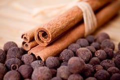Bastoni di cannella con pimento (pepe della Giamaica) fotografia stock