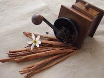 Bastoni di cannella, macinacaffè di legno e fiore bianco e del chicco di caffè su tela Fotografia Stock