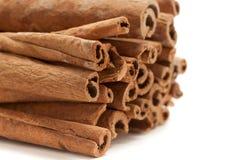Bastoni di cannella organici crudi (cinnamomum verum) Immagine Stock Libera da Diritti
