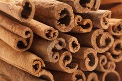 Bastoni di cannella organici crudi (cinnamomum verum) Fotografie Stock Libere da Diritti